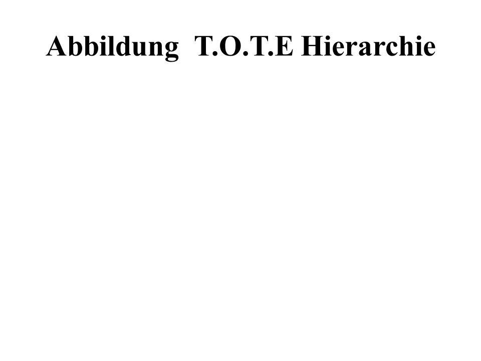 Abbildung T.O.T.E Hierarchie