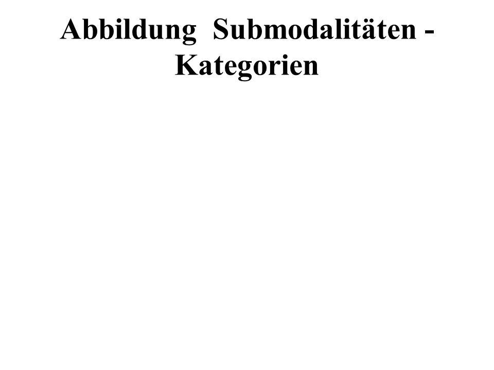Abbildung Submodalitäten - Kategorien