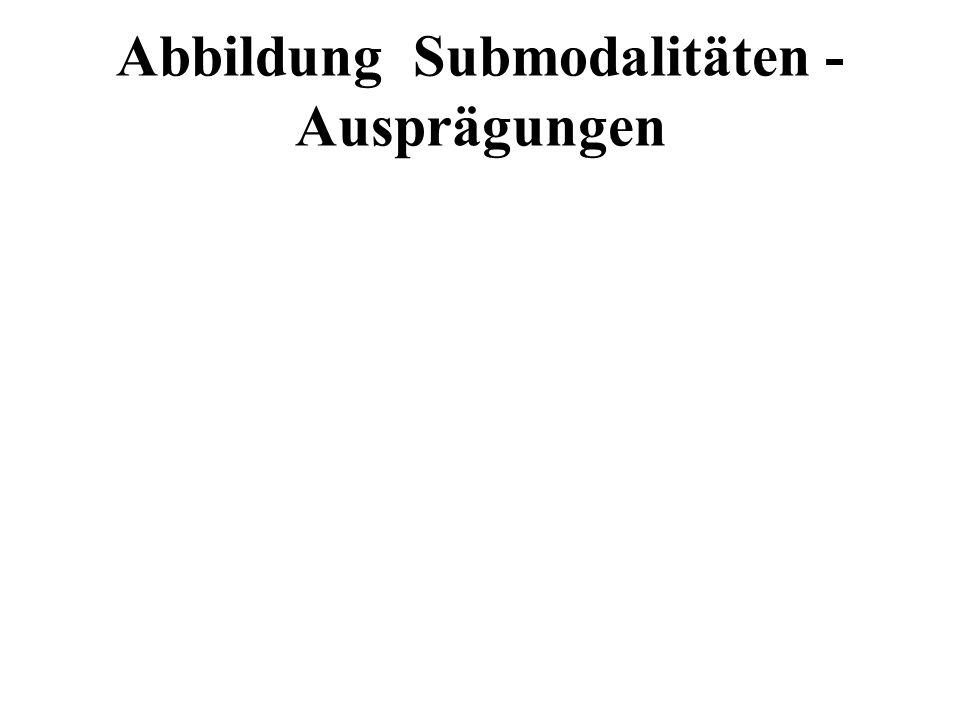 Abbildung Submodalitäten - Ausprägungen