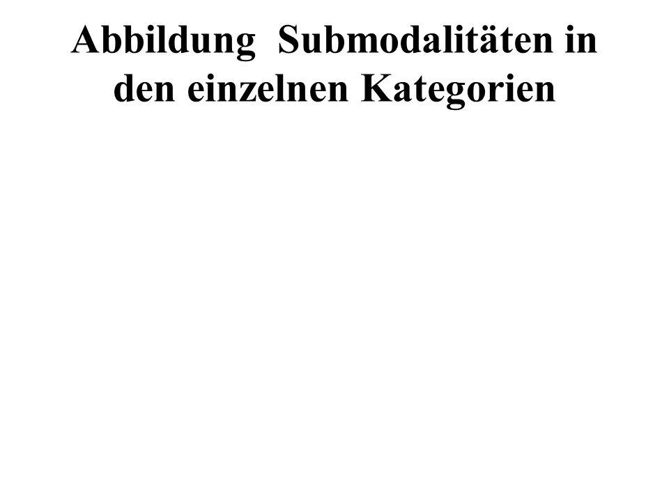 Abbildung Submodalitäten in den einzelnen Kategorien