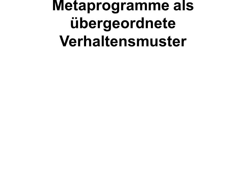 Metaprogramme als übergeordnete Verhaltensmuster