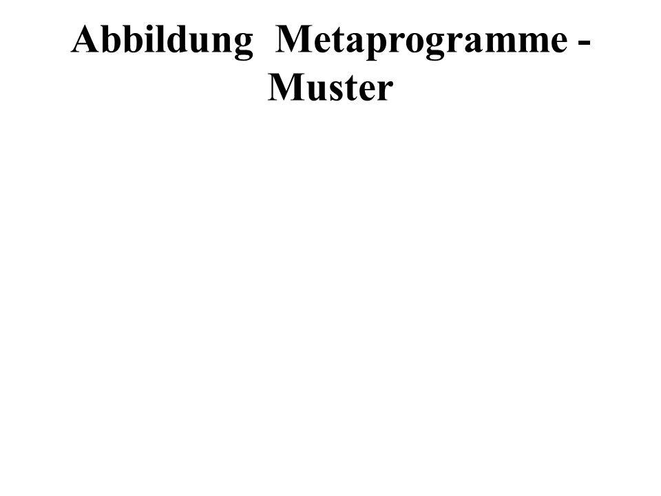 Abbildung Metaprogramme - Muster