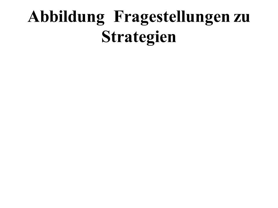 Abbildung Fragestellungen zu Strategien