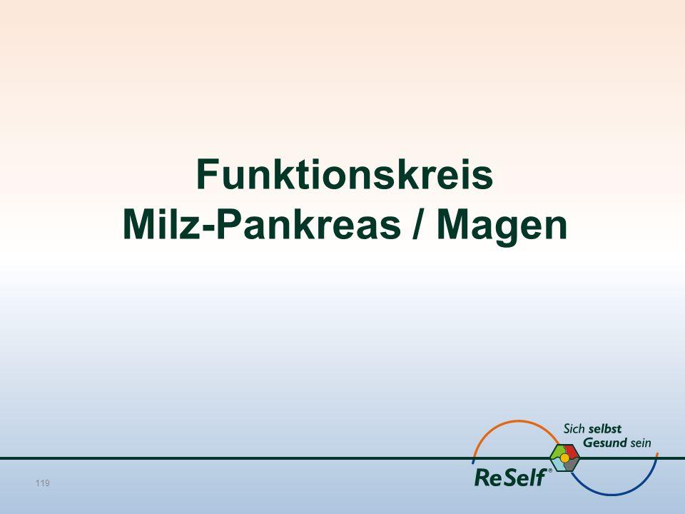 Funktionskreis Milz-Pankreas / Magen