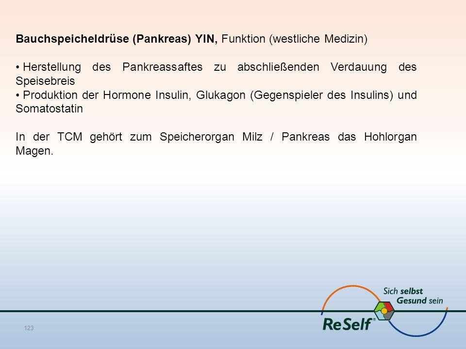 Bauchspeicheldrüse (Pankreas) YIN, Funktion (westliche Medizin)