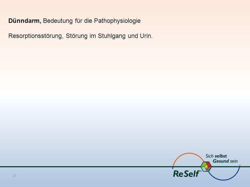 Dünndarm, Bedeutung für die Pathophysiologie