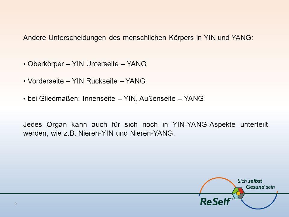 Andere Unterscheidungen des menschlichen Körpers in YIN und YANG: