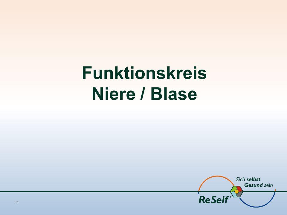 Funktionskreis Niere / Blase