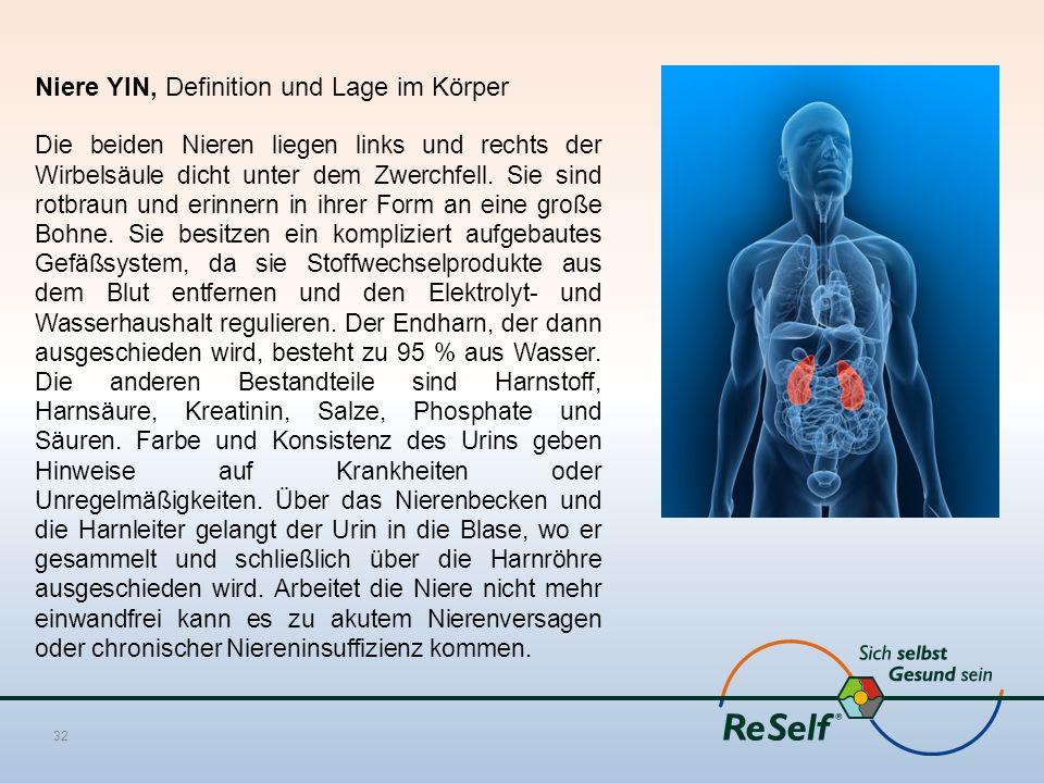 Niere YIN, Definition und Lage im Körper
