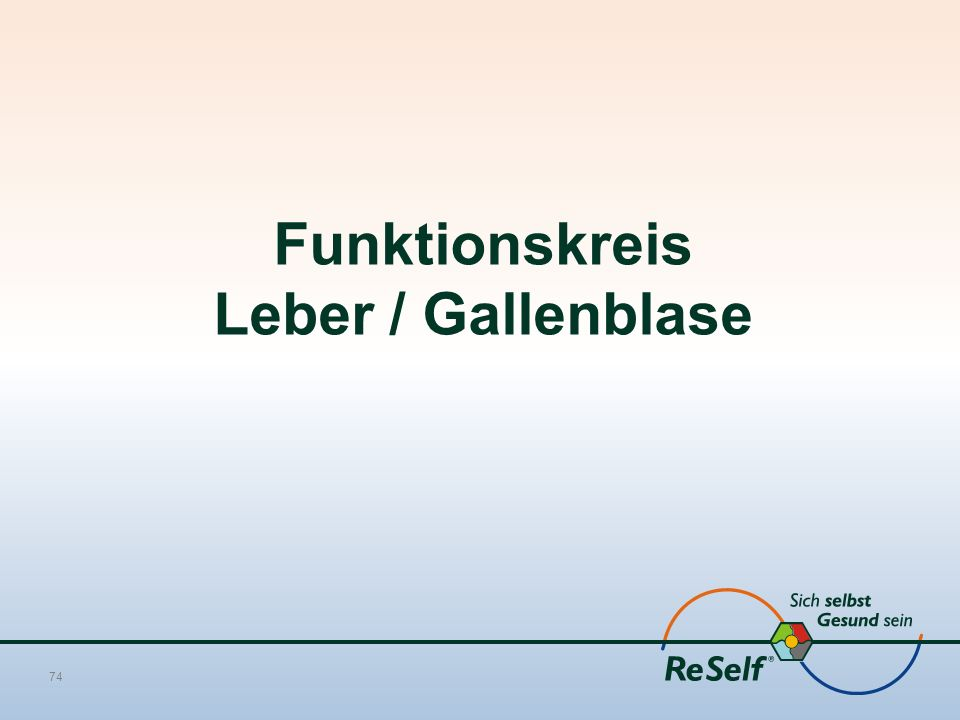 Funktionskreis Leber / Gallenblase