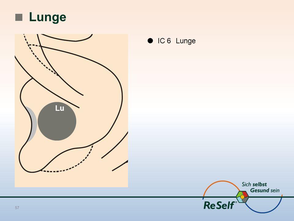 Lunge  IC 6 Lunge Lu