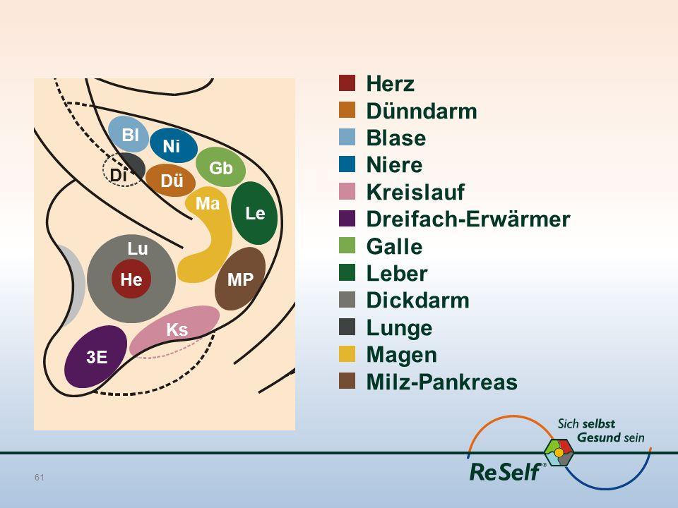 Herz Dünndarm Blase Niere Kreislauf Dreifach-Erwärmer Galle Leber Dickdarm Lunge Magen Milz-Pankreas