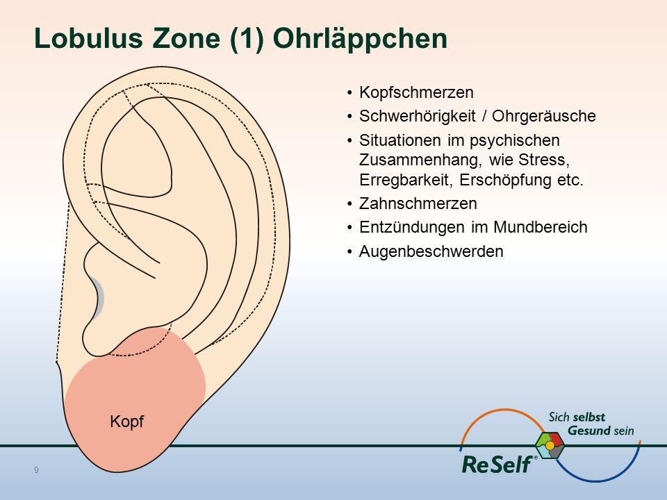 Lobulus Zone (1) Ohrläppchen