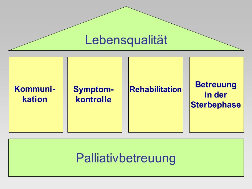 Lebensqualität Palliativbetreuung Betreuung Kommuni-kation Symptom-