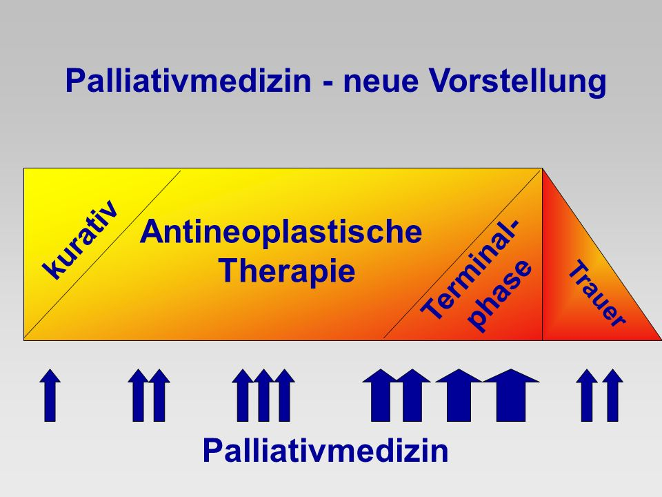 Antineoplastische Therapie Palliativmedizin