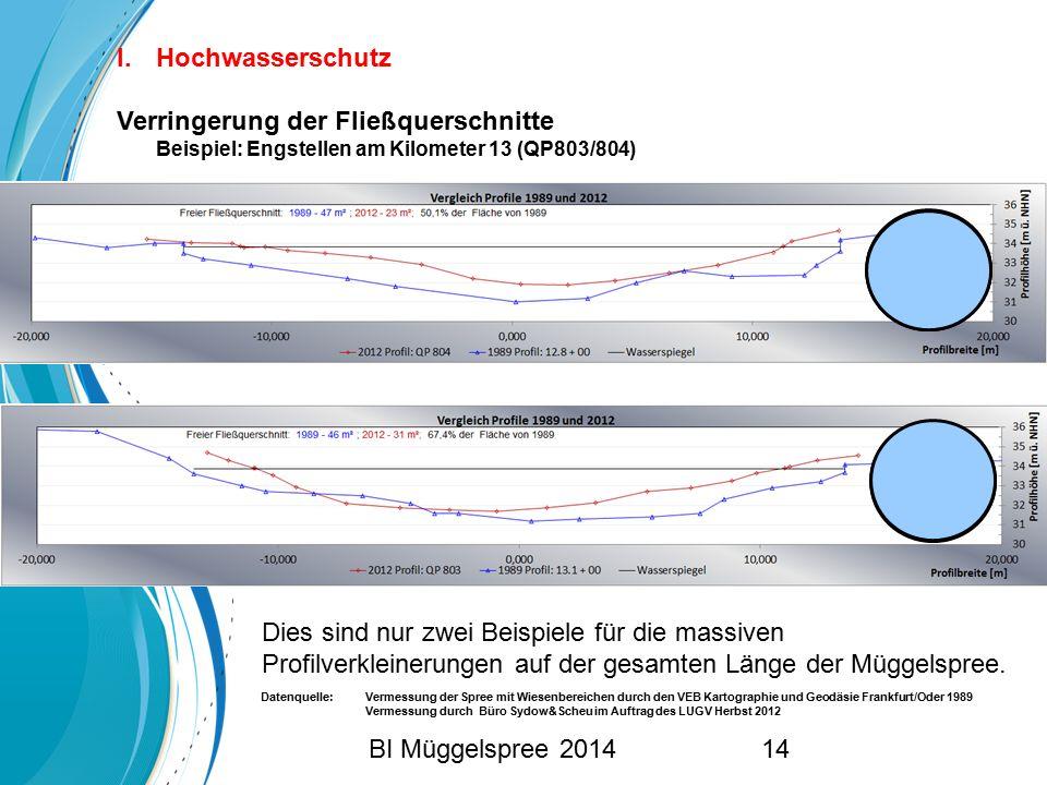 Hochwasserschutz Verringerung der Fließquerschnitte Beispiel: Engstellen am Kilometer 13 (QP803/804)