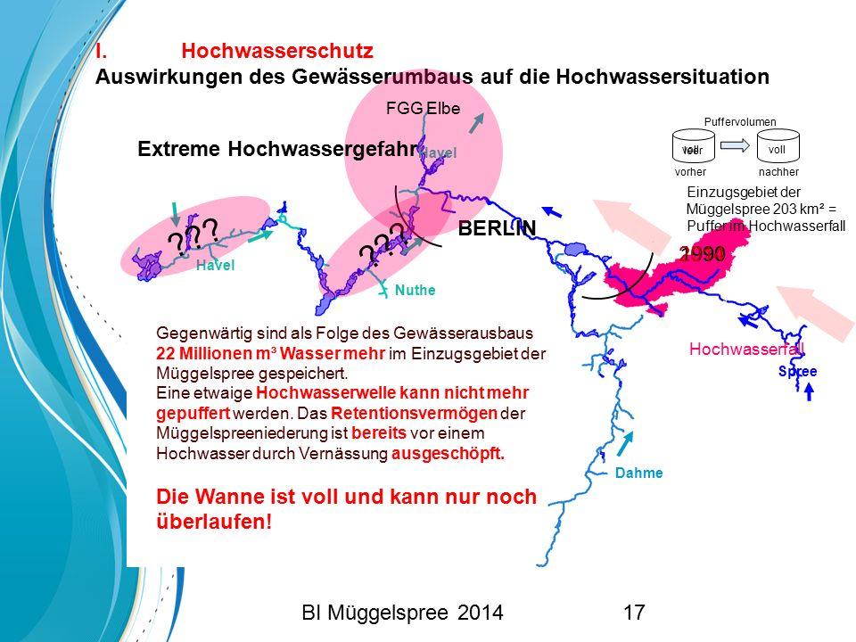 I. Hochwasserschutz Auswirkungen des Gewässerumbaus auf die Hochwassersituation. FGG Elbe. Puffervolumen.