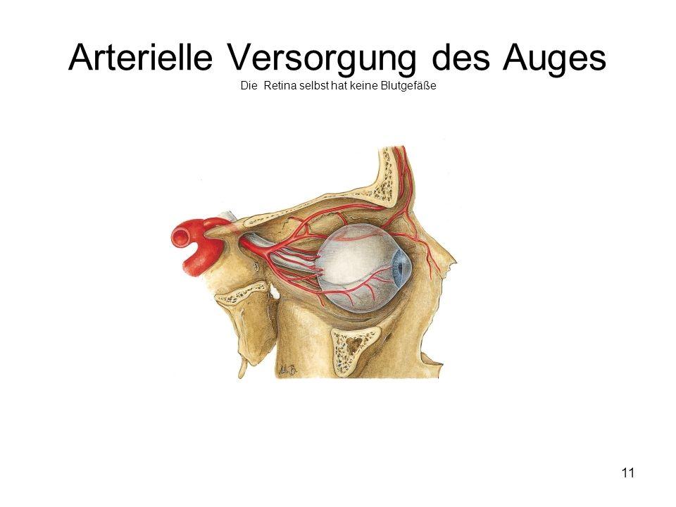 Arterielle Versorgung des Auges Die Retina selbst hat keine Blutgefäße