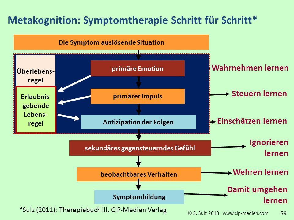 Metakognition: Symptomtherapie Schritt für Schritt*