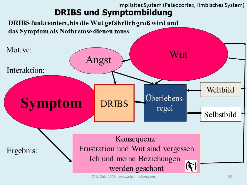 Symptom Wut Bedürfnis Angst DRIBS DRIBS und Symptombildung Motive: