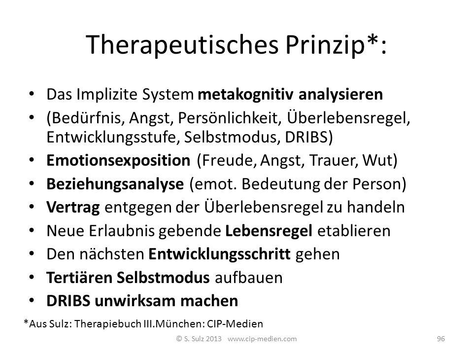 Therapeutisches Prinzip*: