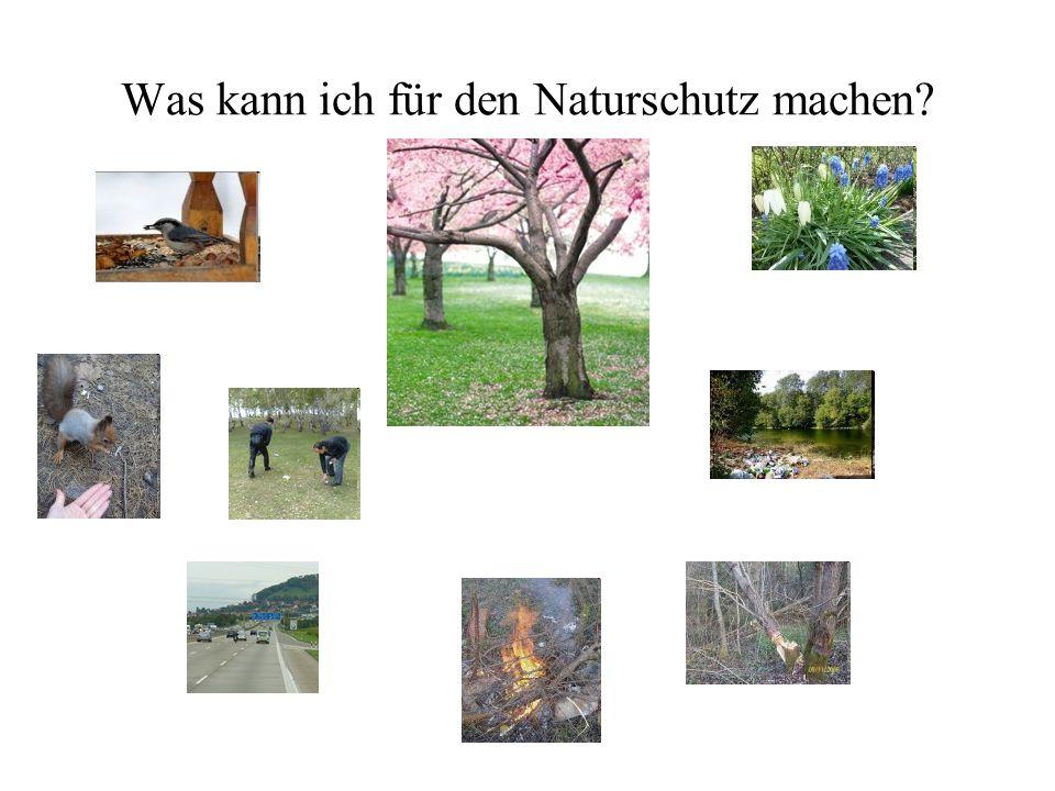 Was kann ich für den Naturschutz machen