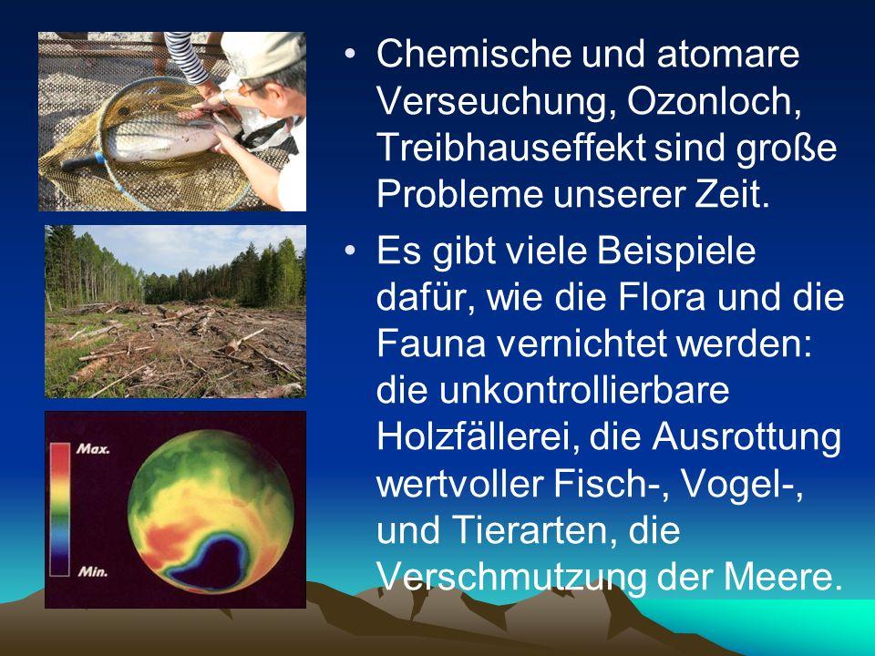 Chemische und atomare Verseuchung, Ozonloch, Treibhauseffekt sind große Probleme unserer Zeit.