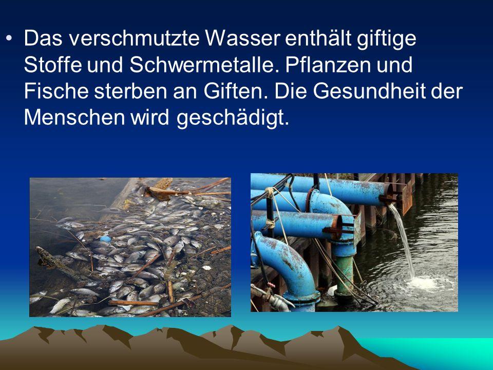 Das verschmutzte Wasser enthält giftige Stoffe und Schwermetalle