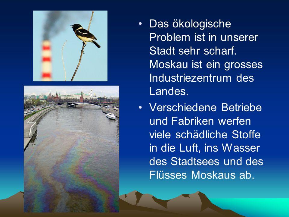 Das ökologische Problem ist in unserer Stadt sehr scharf