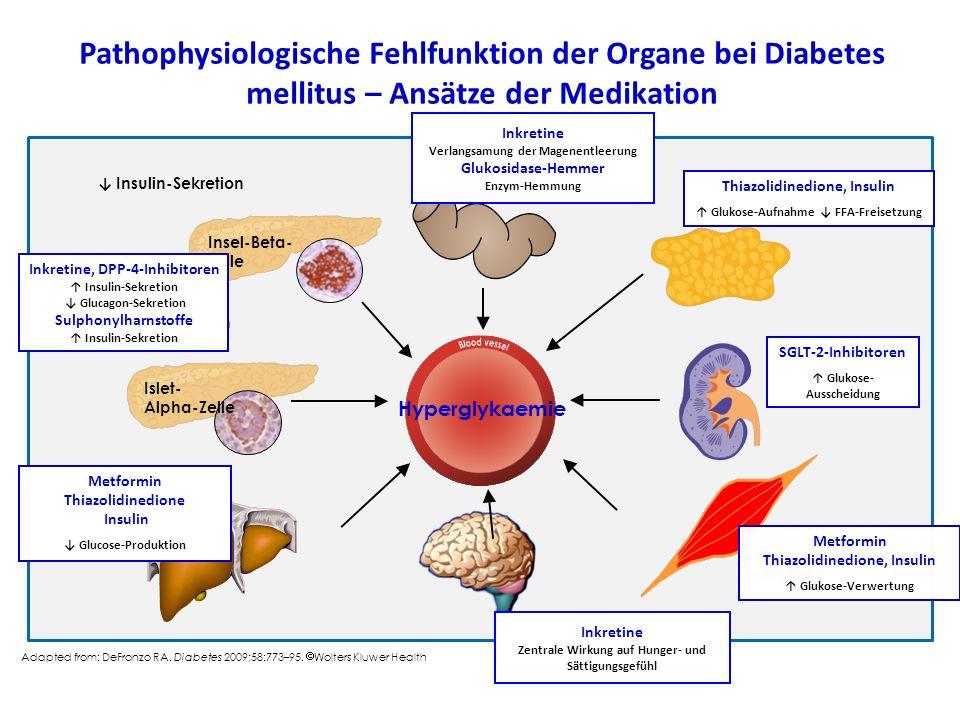 Pathophysiologische Fehlfunktion der Organe bei Diabetes mellitus – Ansätze der Medikation