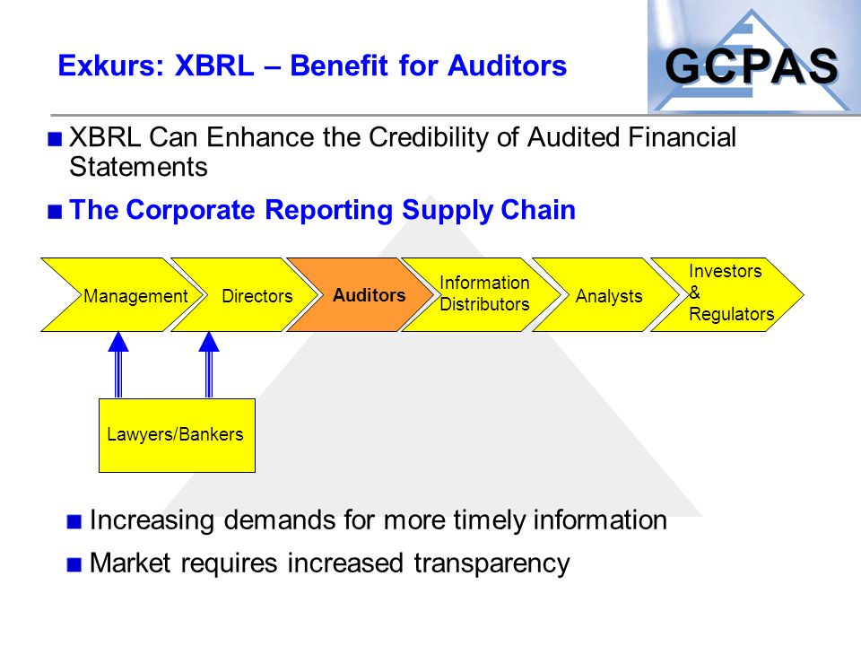 Exkurs: XBRL – Benefit for Auditors