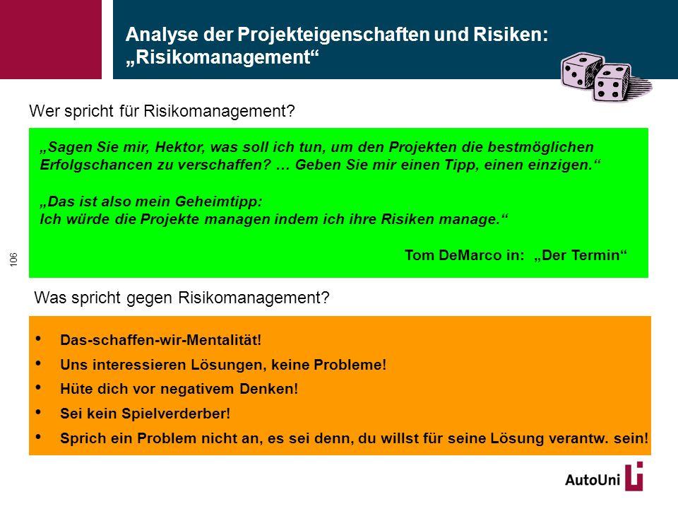 """Analyse der Projekteigenschaften und Risiken: """"Risikomanagement"""
