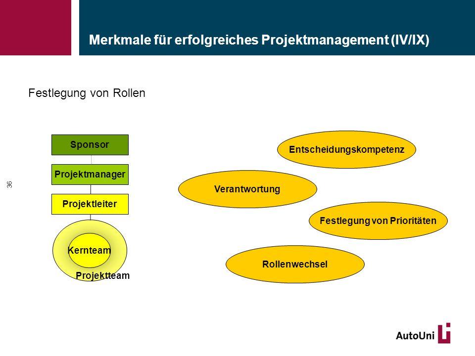 Merkmale für erfolgreiches Projektmanagement (IV/IX)
