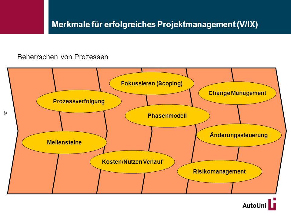 Merkmale für erfolgreiches Projektmanagement (V/IX)