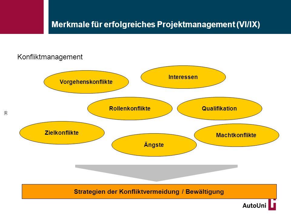 Merkmale für erfolgreiches Projektmanagement (VI/IX)