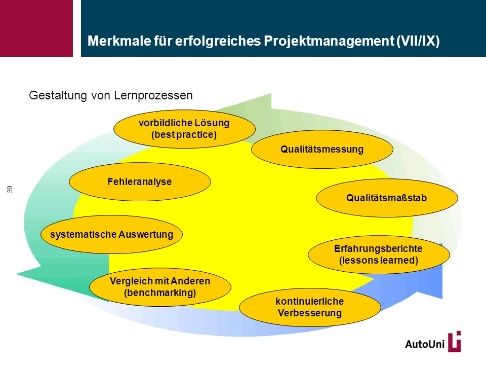 Merkmale für erfolgreiches Projektmanagement (VII/IX)