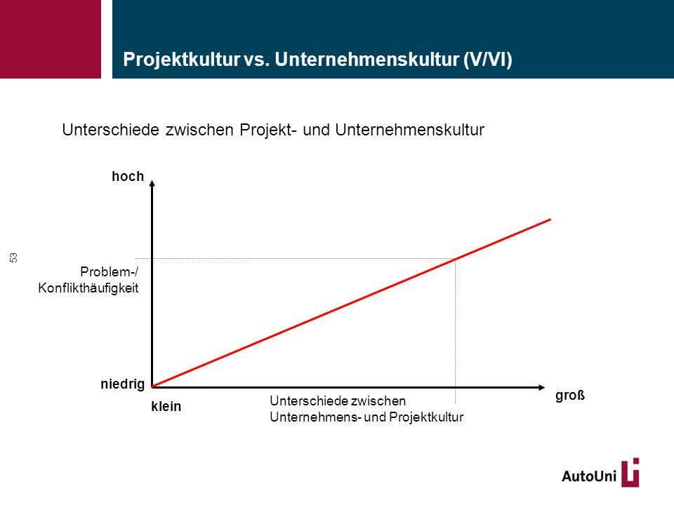 Projektkultur vs. Unternehmenskultur (V/VI)