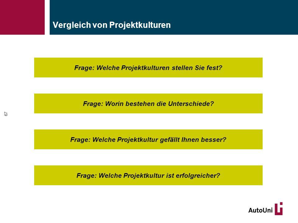 Vergleich von Projektkulturen