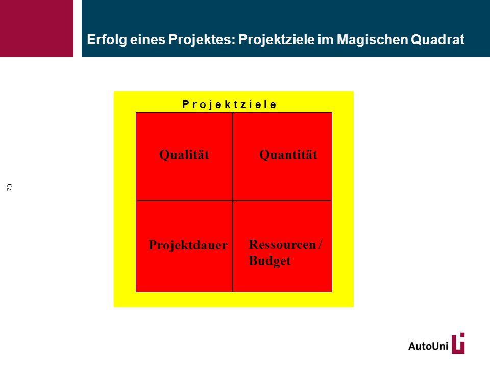 Erfolg eines Projektes: Projektziele im Magischen Quadrat