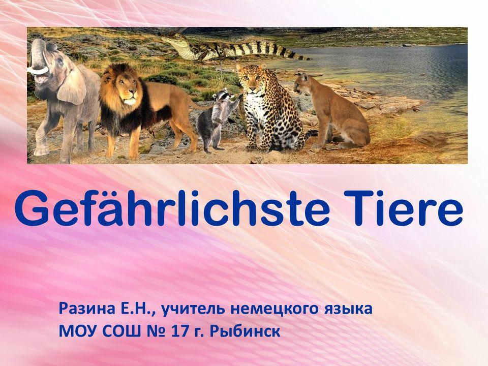 Gefährlichste Tiere Разина Е.Н., учитель немецкого языка