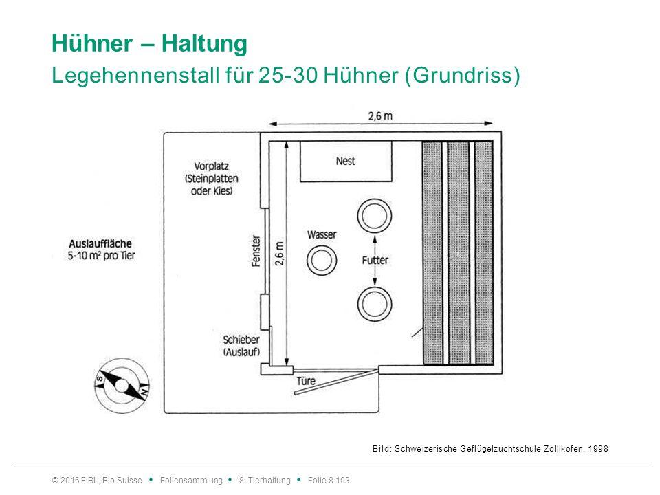 Hühner – Haltung Legehennenstall für 25-30 Hühner (Aufriss)