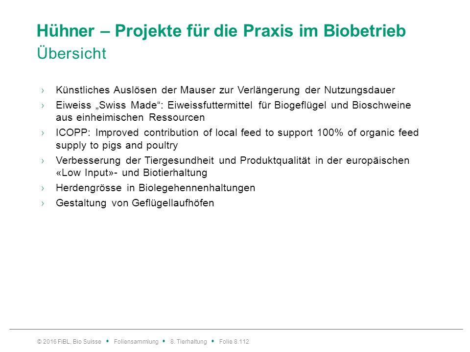 Hühner – Projekte für die Praxis im Biobetrieb