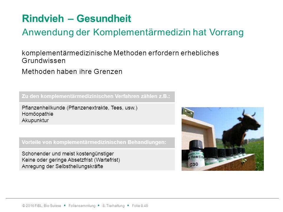 Rindvieh – Gesundheit Homöopathie Samuel Hahnemann