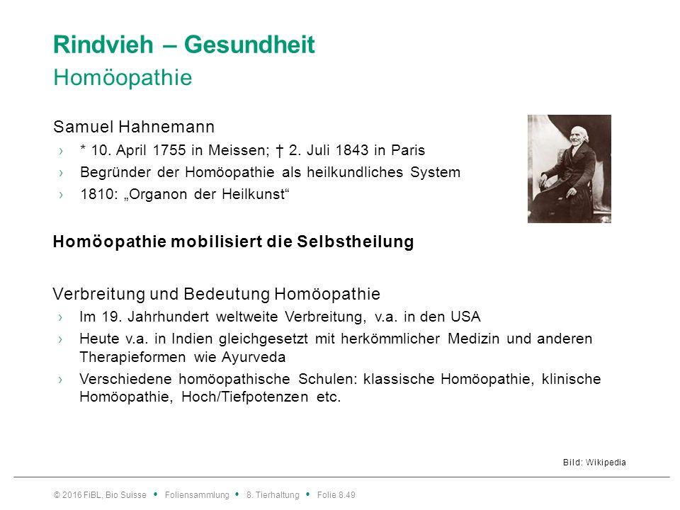 Rindvieh – Gesundheit Das Wichtigste zur Homöopathie
