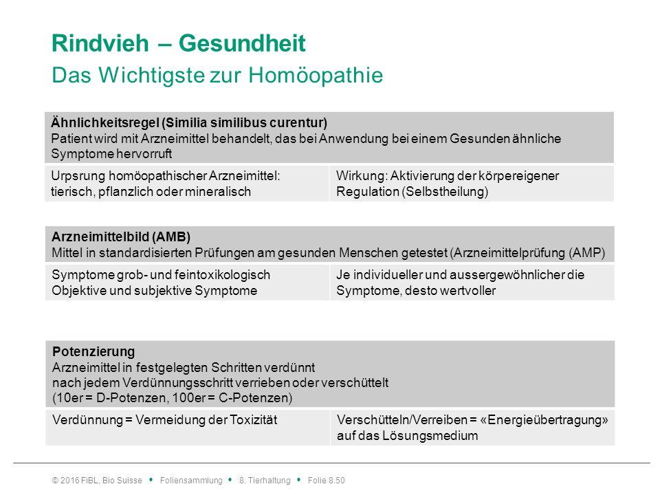 Rindvieh – Gesundheit Einsatz Homöopathie: Voraussetzungen und Grenzen