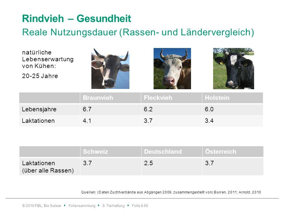 Rindvieh – Gesundheit Abgang vor dem Milchleistungsoptimum