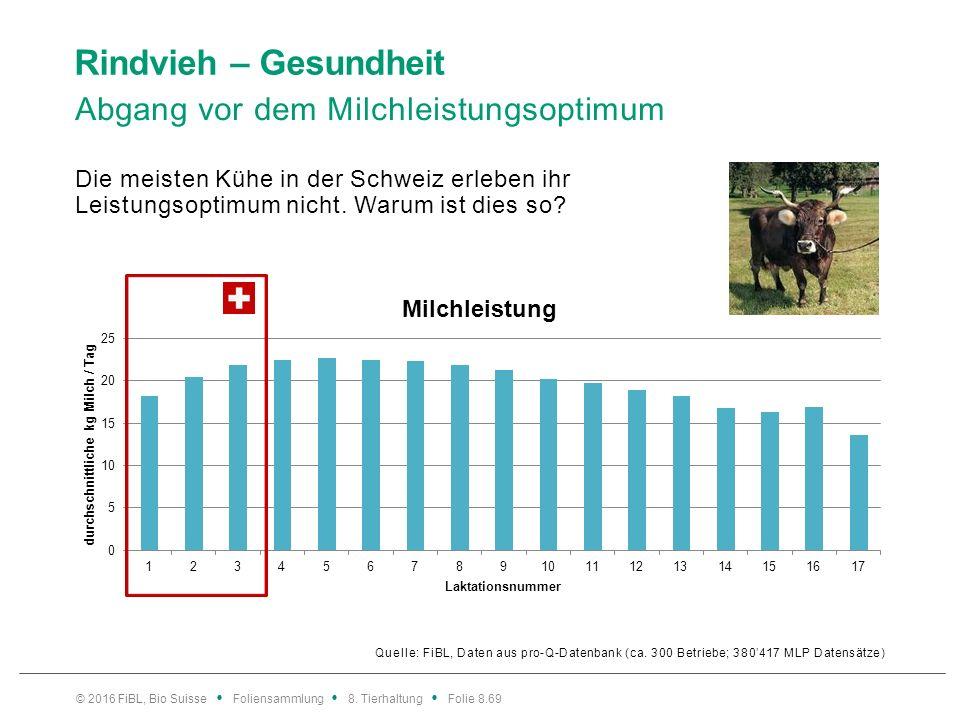 Rindvieh – Gesundheit Abgangsursachen von Milchkühen