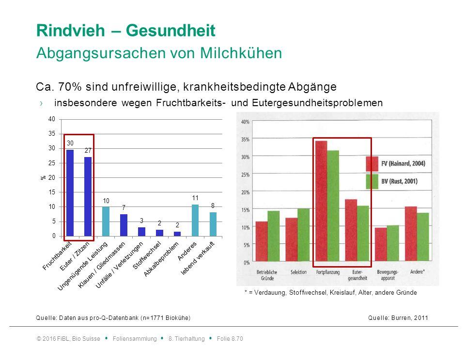 Rindvieh – Gesundheit Risikofaktoren/Massnahmen bezüglich Nutzungsdauer.