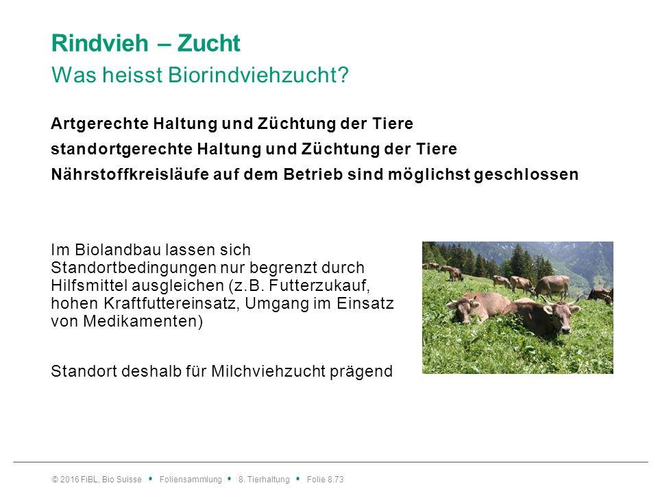 Rindvieh – Zucht Biotierzucht: Orientierung an der Logik der Tierart