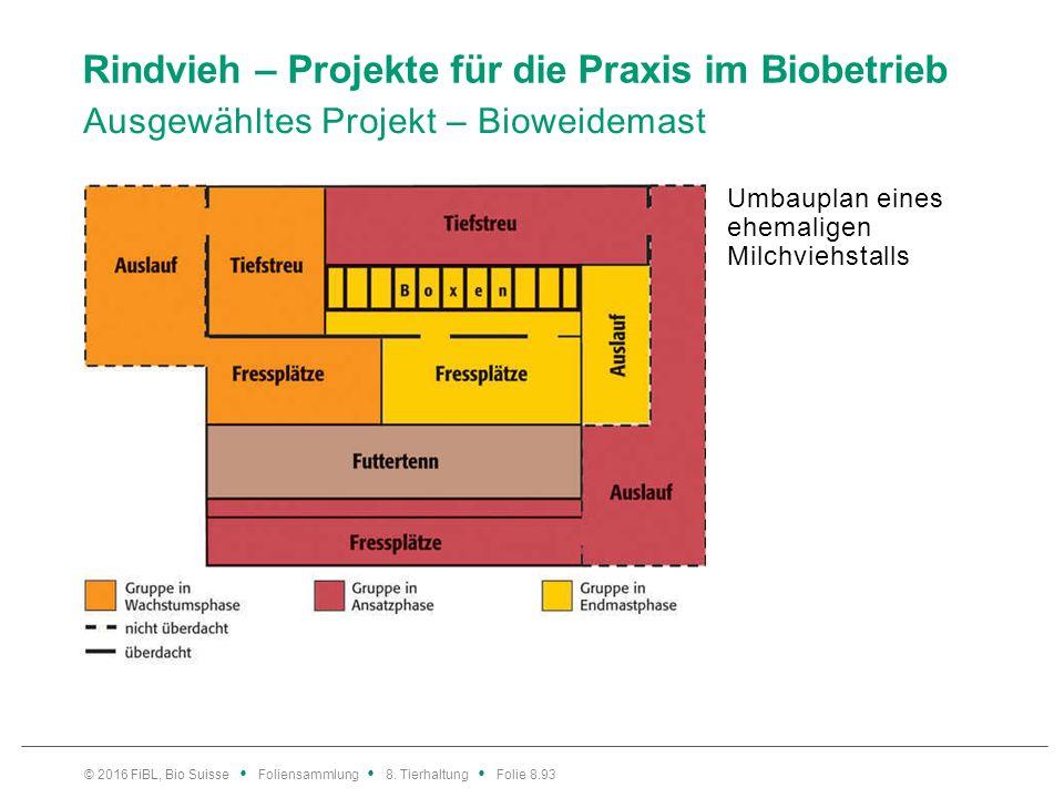 Hühner – Bedeutung Bioeier und Biopoulets sind gefragter denn je